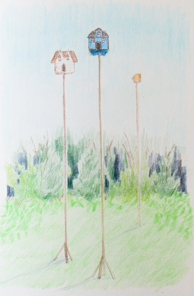 Walton bird houses (1 of 1)