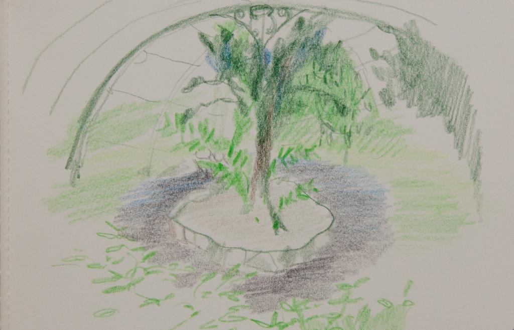 Paris sketch (1 of 1)